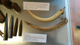 Spleißwerkzeuge im Museum